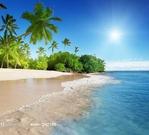 蓝天椰树大海风景摄影高清图片